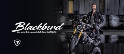 Presentamos la nueva Blackbird