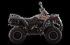 ATV250 C/REVERSA