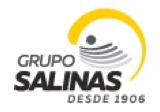 Logo Grupo Salinas